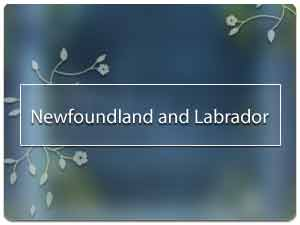 Vastu pandit in Newfoundland and Labrador